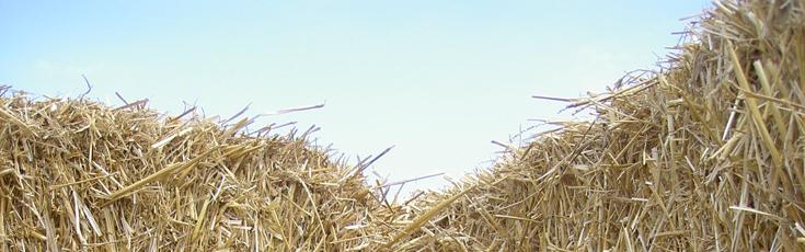 strawbales against blue sky at rock farm slane
